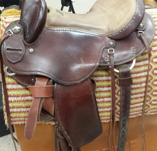 Used Saddles for sale MN