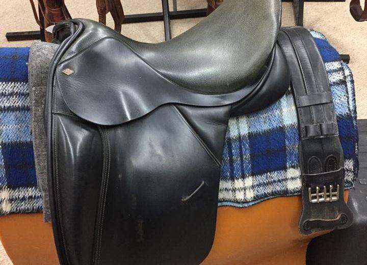 Used Dressage Saddle Archives - Schatzlein Saddle Shop